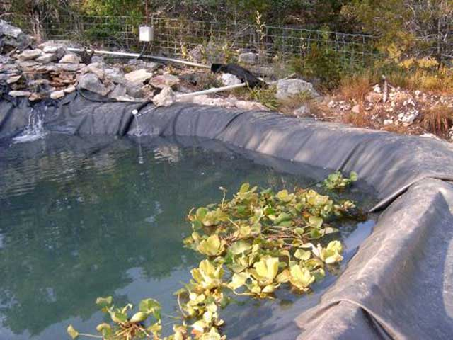 how to hide pond liner