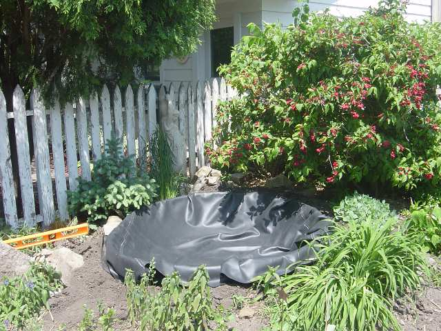 Small pond with rubber liner exposed